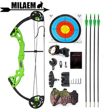 Archery Children Compound Bow And Arrow Set 15-29lbs Youth Junior With 4 Fiberglass Arrows Shooting Accessories