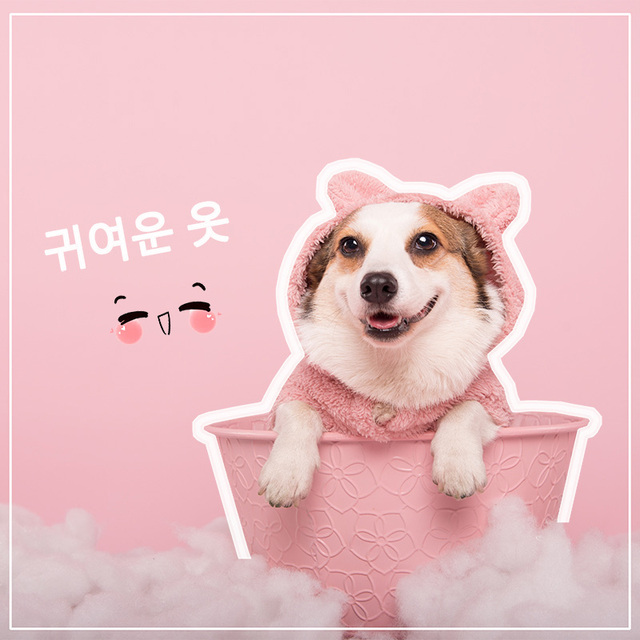 Cute Dog Hoodie Winter Clothes