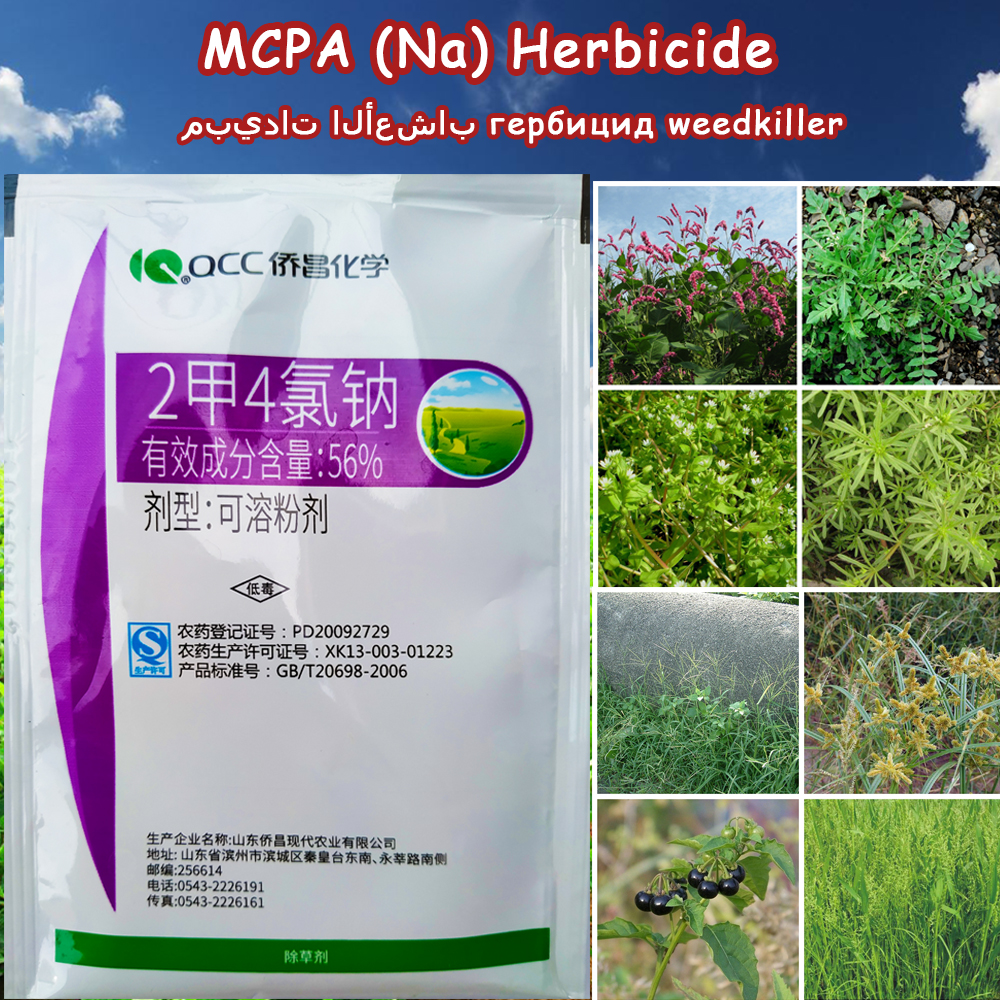 10g Dimethyltetrachloro MCPA (Na) Herbicide Phenoxyacetic Acid Selectivity  Hormone Type Remove Weed Kill Grass Spray Weedkiller