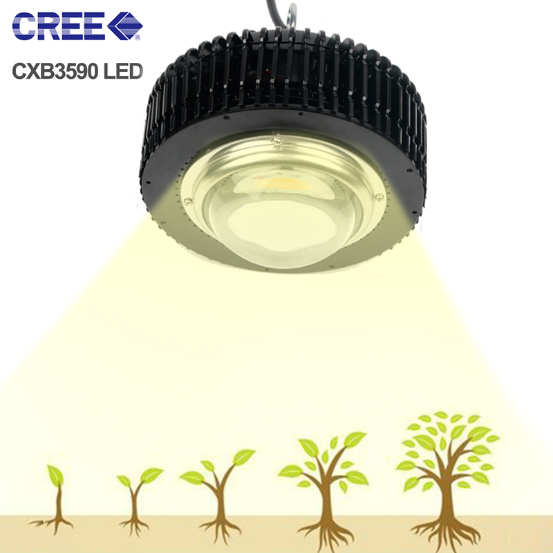 LED Grow Light COB 3500K CXB3590 CXB3070 Full Spectrum Lamp For Plants  LED Fitolampy Growth Lamp Indoor Seedlings Flowers Tent