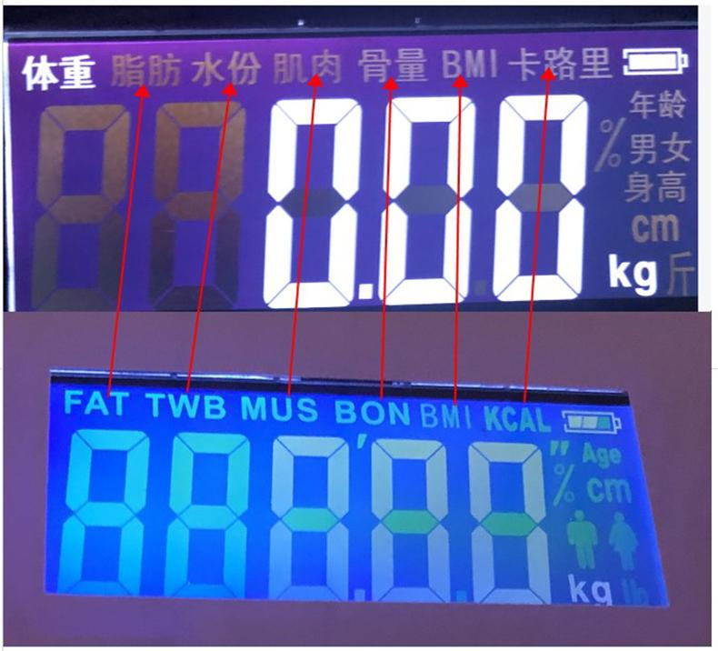USB charging Smart Household Weighing Scale Fat Scale LED Digital English Function Screen USB charging