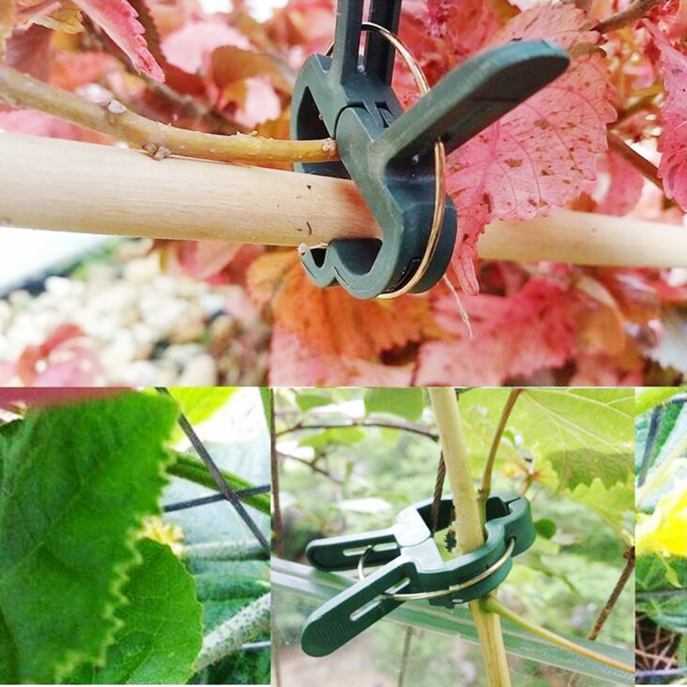 20Pcs Fastener Greenhouse Bracket Pole Fixed Clamp Flower Plants Seedling Stem Support Plant Grafting Stakes Connector Clip