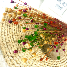 50pcs Real Happy Flower Small Natural Dried Flowers Bouquet Dry Flowers Press Mini Decorative Photography Photo Backdrop Decor