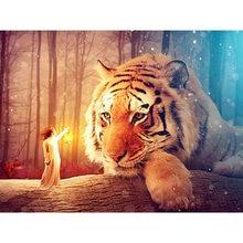 Diy картина по номерам тигр маслом Раскраска животных 40 х 50