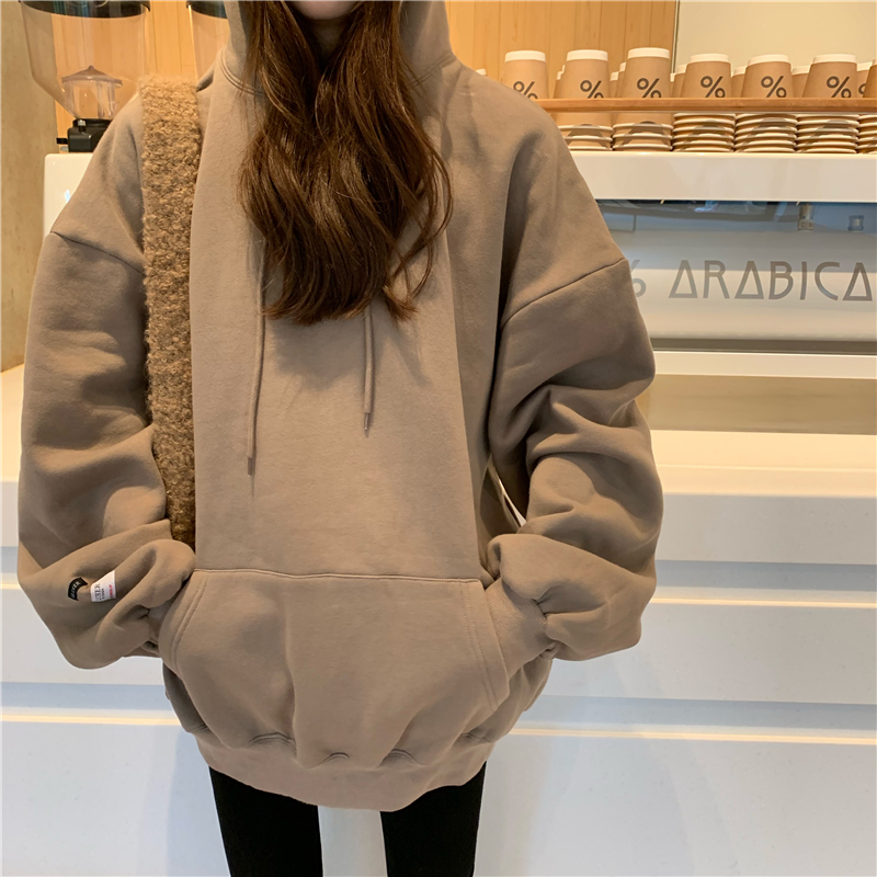 5 Colors 2019 Autumn And Winter Korean Style Solid Color Thicking Hoodies Womens Warm Sweatshirts And Pullovers  (R99964)