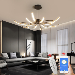 MDWELL Matte Black/White Finished Modern Led Ceiling Lights for living room bedroom study room Adjustable New Led Ceiling Lamp