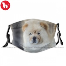 Face-Mask Chow Chow FILTERS Washable Mouth Fast-Delivery Adults Cute with Cloth