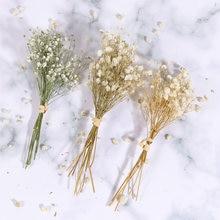Flores secas amante grama gypsophila pequeno buquê flores secas rústico arragement suprimentos babysbreath buquê decoração vaso