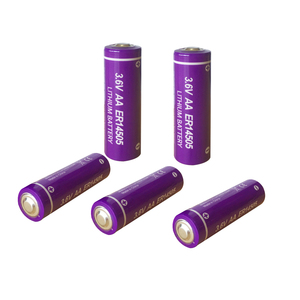 Image 4 - 16PCS PKCELL ER14505 3.6V 2400mah aa battery lithium primary batteries