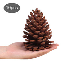 10pcs Christmas Decoration Large Natural Pine Cones Pinecone Xmas New Year Holiday Party Decoration Ornament For Home Supplies4P