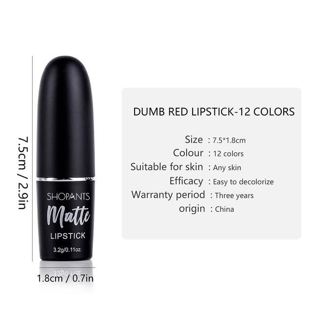 Sexy Matte Lipstick Makeup Silver 12 Color Nude Long Lasting Pigment Waterproof Nutritious Velvet Lips Stick 5