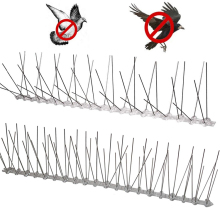 Repeller Bird Spike-Strip Deterrent Pigeon Plastic Stainless-Steel And for Hot-Sale