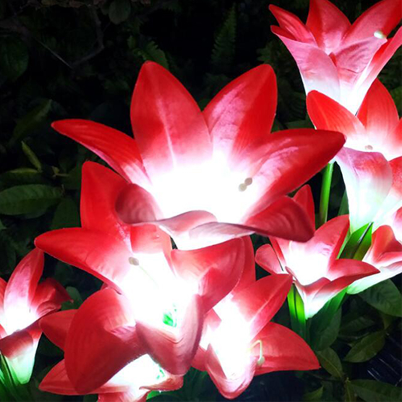4 cabeça flor de lírio luz solar