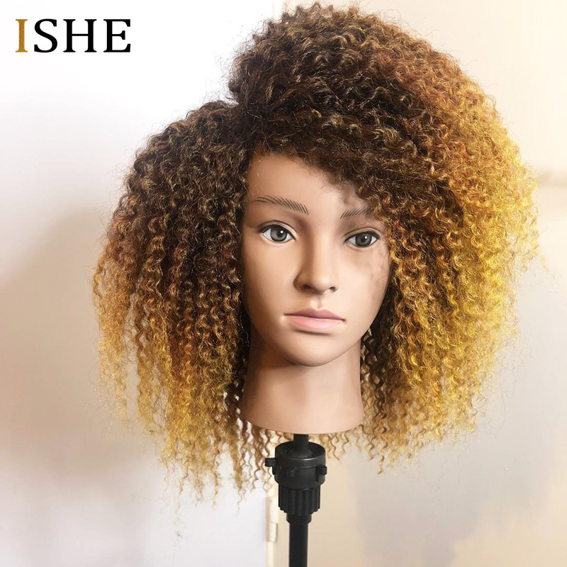 250% Density Afro Kinky Curly Ombre 13x6 Lace Front Human Hair Wigs Pre Plucked Lace Frontal Wig For Women Remy Black End