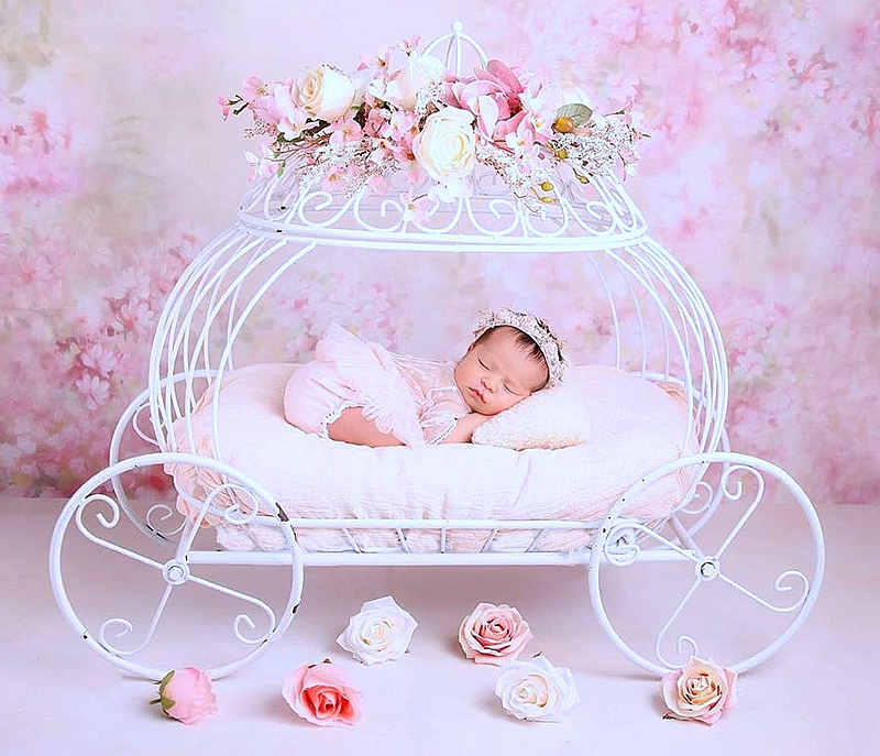 Good Newborn Photography Props Baby Iron Princess Cinderella Carriage Prop Posing Pumpkin Car Poser Fotografia Photo Props