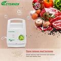 Стерильный озоновый фруктовый фильтр 400 мг озонатор генератор воды очиститель воздуха