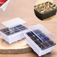 Plant-Seeds Seeding-Case Cover-Tray Flower-Pot Propagation Grow-Box with Insert Plug
