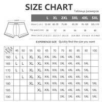 4 Pcs/lot Breathable Mesh Silk Men's Underwear  1