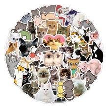 10/50Pcs Leuke Naughty Cats Diy Mini Papier Sticker Dagboek Fotoalbum Scrapbooking Decoratie Sticker Kawaii Briefpapier Kid Speelgoed graffiti