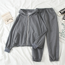 spring Tracksuit Long Sleeve Thicken Hooded Sweatshirts 2 Piece Set Casual Sport