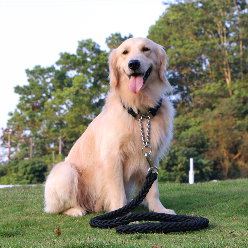 Dog Hand Holding Rope Dog Rope Dog Chain With Neck Ring P Pendant Medium Large Dog Golden Retriever Labrador Dog Traction Rope