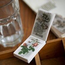 Criativo planta do vintage ilustrado escrita nota plantas flores almofadas de memorando transparente ácido sulfúrico papel folha solta notas