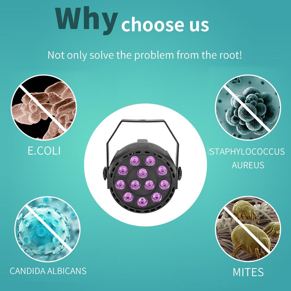 מנורה נגד וירוסים