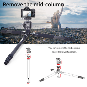 Image 4 - INNOREL RT75C/85C Professional Carbon Fiber Tripod Monopod add 360 Panoramic Low Gravity Center Ballhead For Digital Dslr Camera