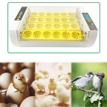 Automatic Brooder 24 Eggs Turning Fully-automatic Incubator Chicken Hatcher Temperature Control Chickens Ducks Geese EU/US/AU цена и фото