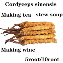 Hot selling organic Cordyceps sinensis, polysaccharide, 5root/10root, enhance immunity, anti-cancer, protect blood vessels