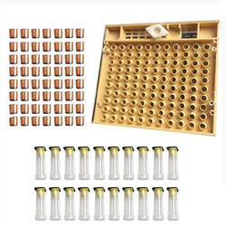 Beekeeping Tools Set Queen Rearing System Cultivating Box 120 Cell Cups Bee Nicot Complete Catcher Cage Beekeeping Equipment