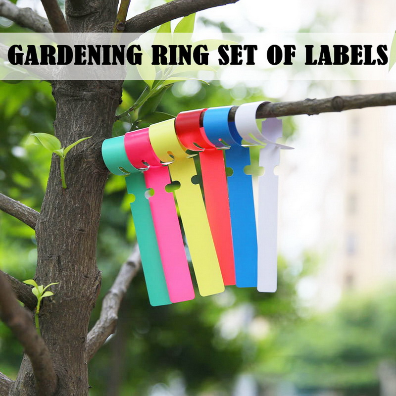Plant Tags Garden Nursery Label Hanging Tree Markers Seedling Plant Fruit Trees Signs Prompt Card Classification Tool