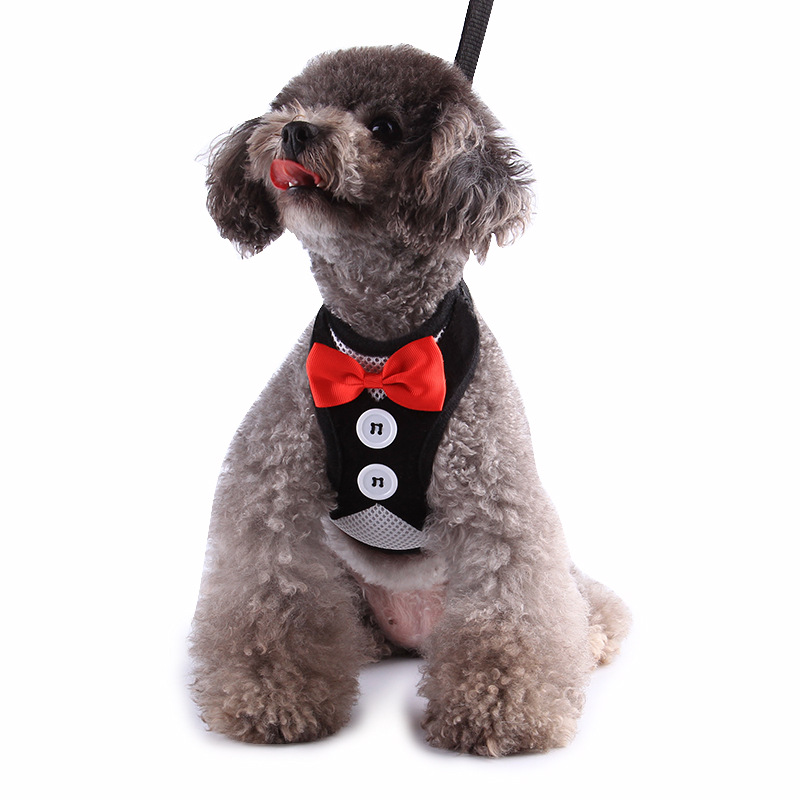 Dog Chain Formal Dress Mao Lian Vest Style Pet Traction Rope Small Medium-sized Dog Pet Dog Supplies Teddy Lanyard