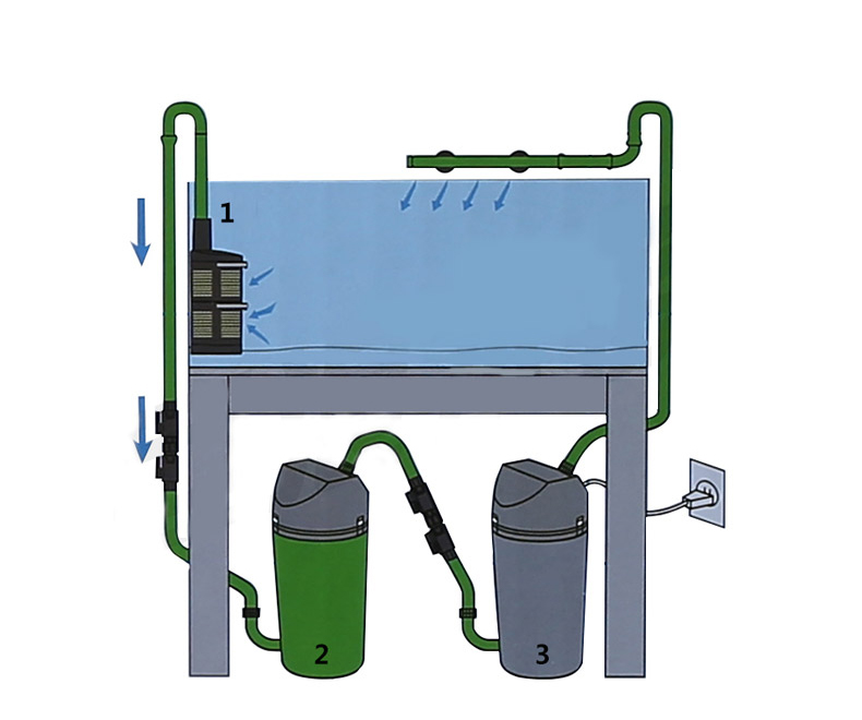 Algas, Caixa de Filtro Externo Equipamentos, Internacional