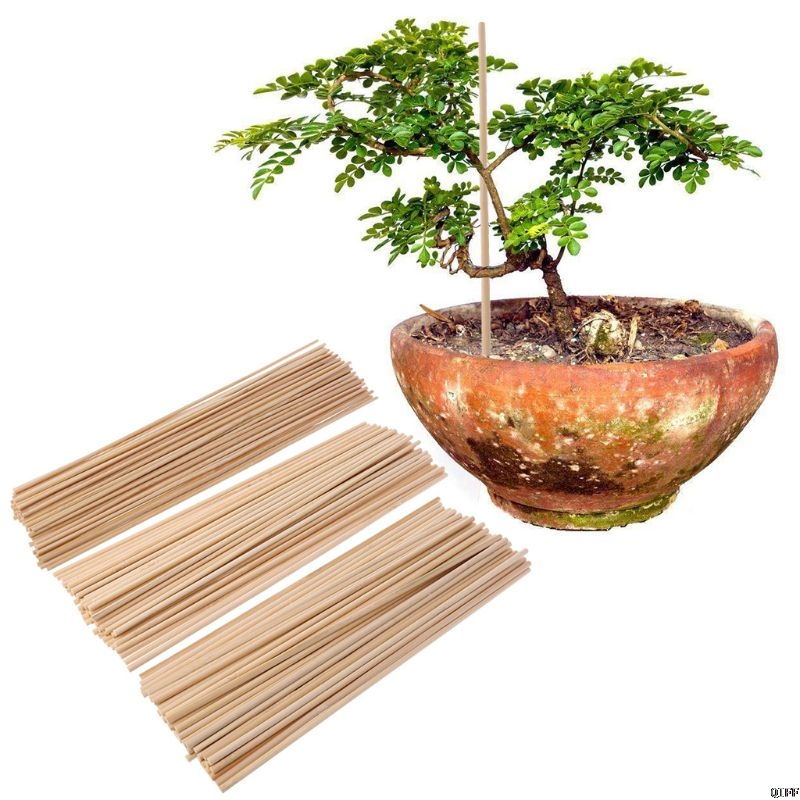 50 Wooden Plant Grow Support Bamboo Plant Sticks Garden Canes Plants Flower Support Stick Cane