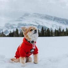 Ciepła bluza dla psa w stylu Supreme Gore tex