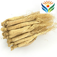 Chinese Natural Wild Dried White Ginseng Root 6 Years Roots China Herbal
