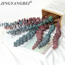 Red Blue Eucalyptus Natural Dried Flowers Leaf Table DIY Palnt Wedding Decor Party Supplies home decoration