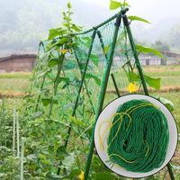 Planta de náilon escalada net jardim treliça net ambientalmente para jardinagem videira frutas flores crescimento da planta escalada|Rede p/ jardim|   -