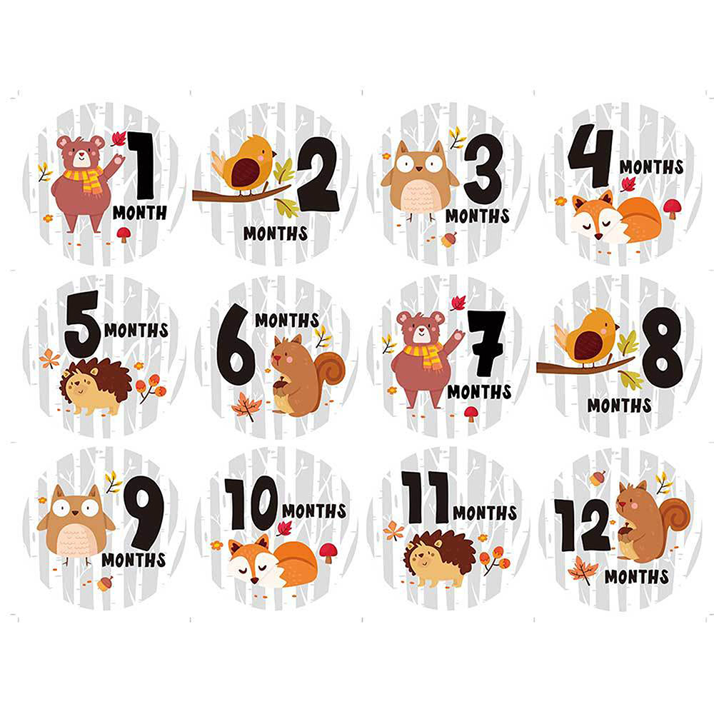 12 Pcs Animal First Year Monthly Milestone Photo Sharing Baby Belly Stickers 1-12 Months For Photo Keepsake Photo Accessories
