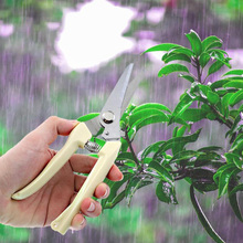 Gardening Scissors Stainless Steel Grafting Tools Fruit Tree Pruning Shears Bonsai Trimmer Gardening Shears Gardening Shears