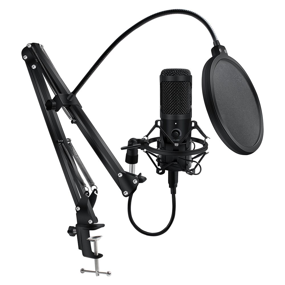 Microphone Wired Stand Condenser-Recording Computer Laptop Karaoke with Metal for PC title=