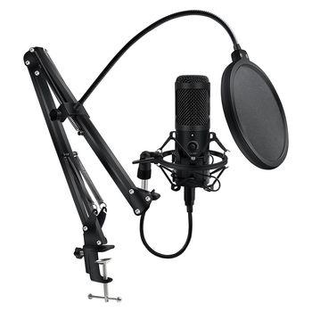 Metalowy mikrofon USB pojemnościowy mikrofon do nagrań D80 Mic ze stojakiem do komputera Laptop PC Karaoke nagrywania studyjnego tanie i dobre opinie H D S N H Blat Mikrofon pojemnościowy Karaoke mikrofon Wielu Mikrofon Zestawy CN (pochodzenie) Jednokierunkowy Przewodowy