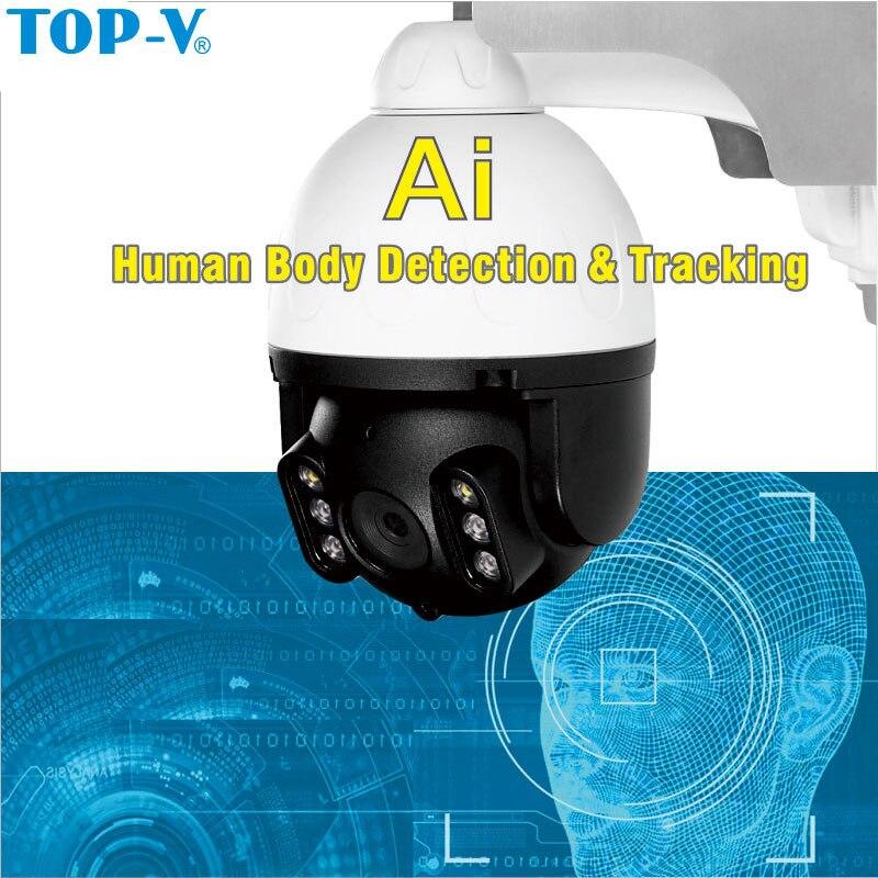 TOP-V ip-камера, WiFi, 1080 P, HD, IR, WiFi, сигнал тревоги, выход, беспроводная камера для дома, ночное видение, безопасность, сеть видеонаблюдения, видео