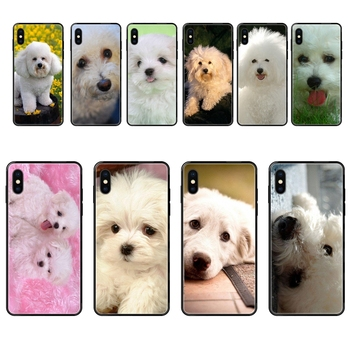 Black Soft TPU New Style Unique For Galaxy S20 S10e S10 S9 S8 S7 S6 S5 edge Lite Plus Ultra Less Expensive Bichon Frise Dog image