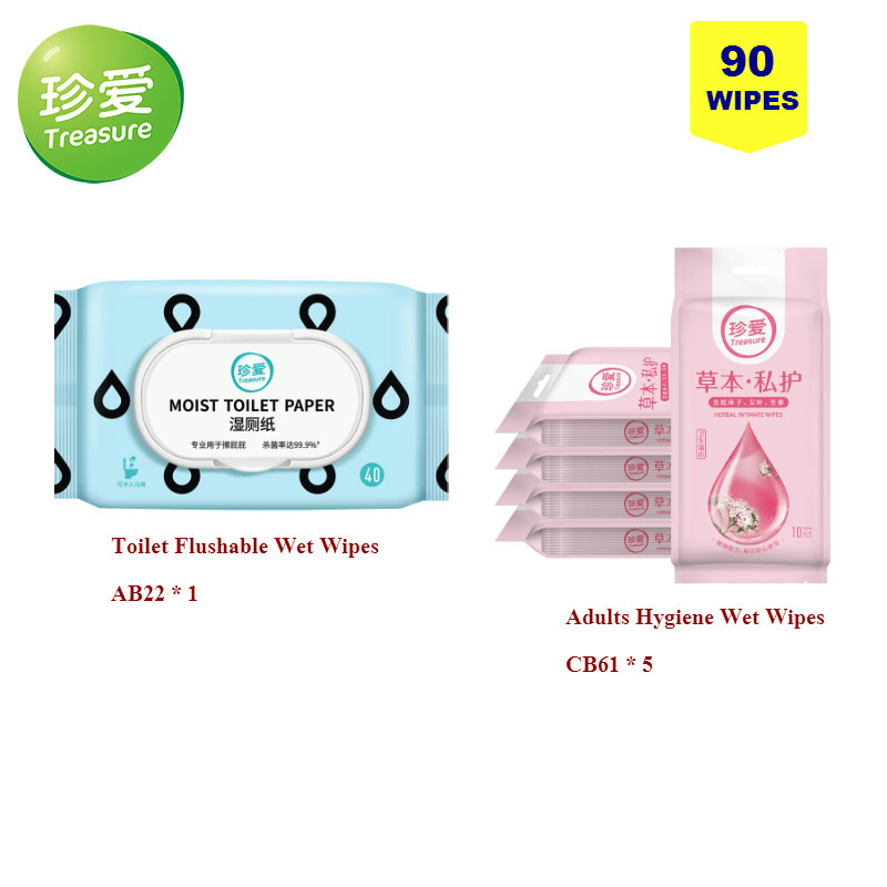 Treasure Toilet Flushable Wet Wipes, Adults Hygiene Wet Wipes Daily Cleaning Use And Travel 90 Wipes Total