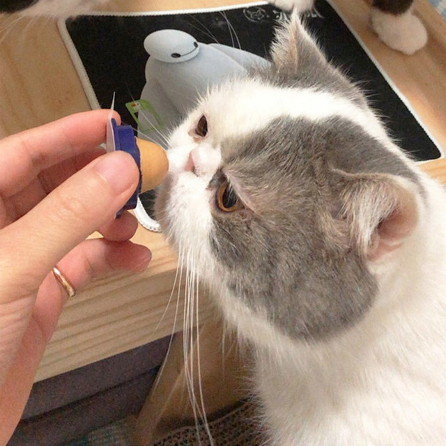 Healthy Cat Snacks Catnip Sugar Candy Licking Solid Nutrition Gel Energy Ball Toy for Cat Increase Drinking Water Help Digestion 1