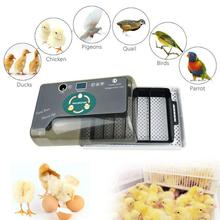 цена на Newest Farm Hatchery Incubator Brooder Machine Egg Hatchers  Chicken Automatic Eggs Incubator Bird Quail Brooder with LED lights