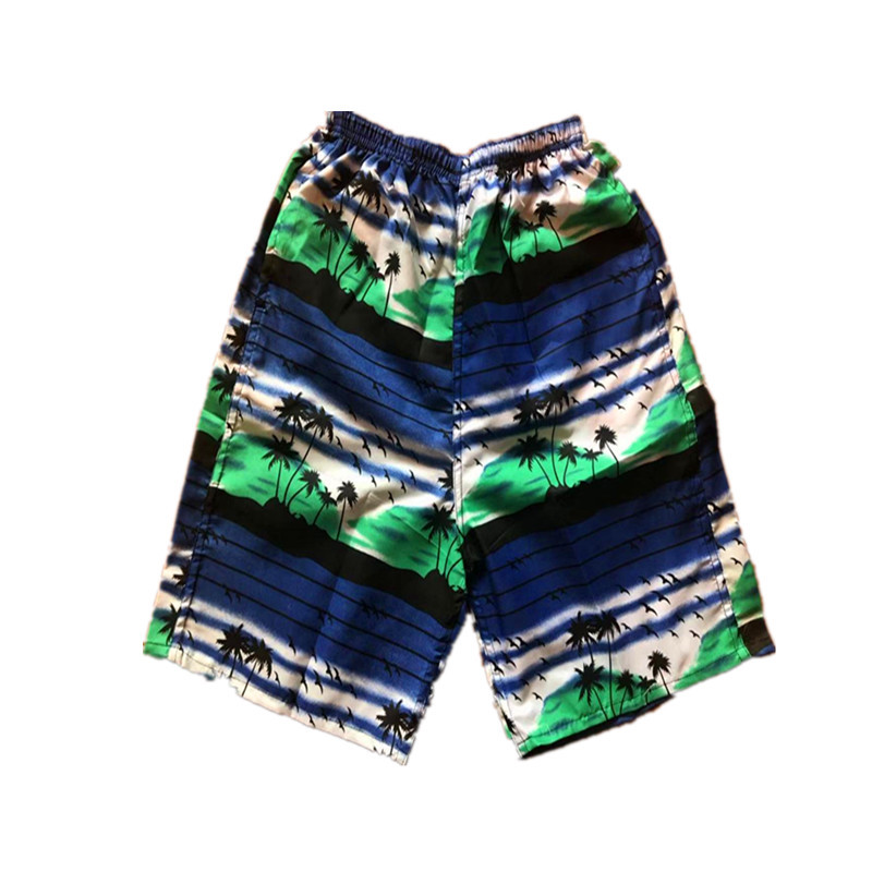 MEN'S Beach Pants Short Casual Quick-Dry Printed Sports Beach Surfing Drifting Hot Selling Stall Household