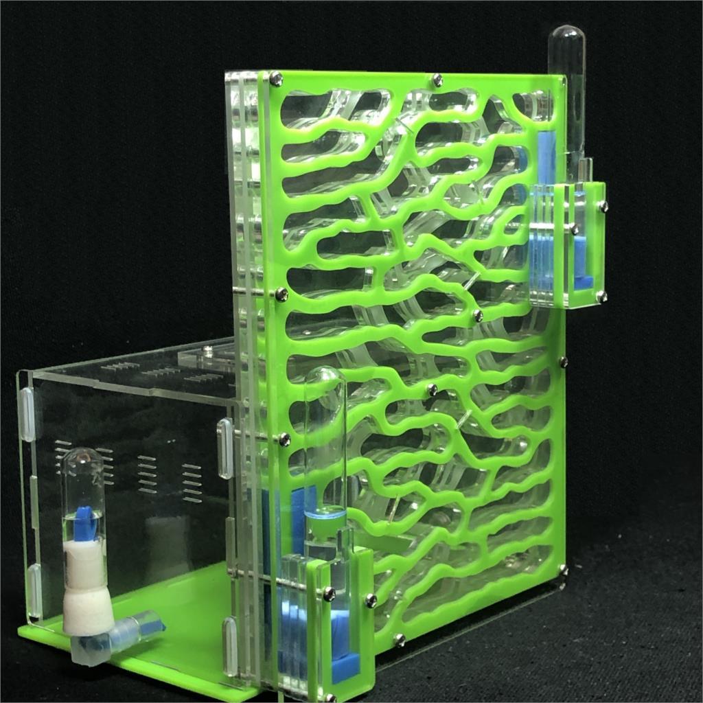 Details about  /Ant Farm Ant Formicarium Acrylic Ant Formicarium Durable Gift For Ant Feeding